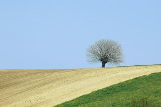 Landschap in Italië